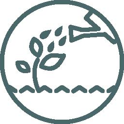 water-geven-kiem-groei-plant-idee-leiderschap-gieter-gieten-regen-wateren-neuro-leiderschap-mind-coach-my-millennial-mind-coaching-brein-brain-based